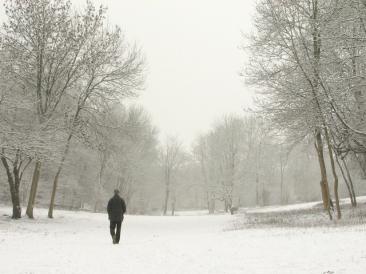 snow-1380889-640x480